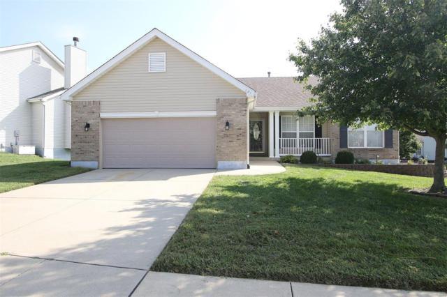 621 Wild Horse Creek Drive, Fairview Heights, IL 62208 (#18074417) :: PalmerHouse Properties LLC
