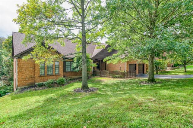 11007 Rambling Oaks Drive, Sunset Hills, MO 63128 (#18074497) :: The Becky O'Neill Power Home Selling Team