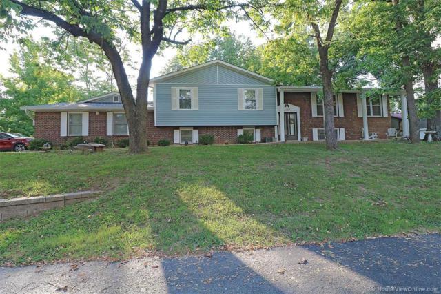 1120 Timberline, Fenton, MO 63026 (#18074739) :: PalmerHouse Properties LLC