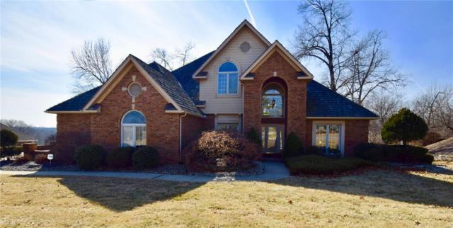 6608 Fox Creek Drive, Edwardsville, IL 62025 (#18075466) :: Fusion Realty, LLC