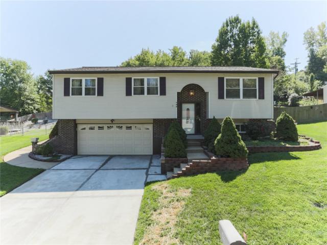 742 Cardinal Park Circle, Fenton, MO 63026 (#18075600) :: PalmerHouse Properties LLC