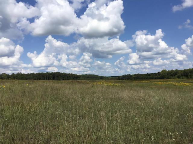 11555 County Road 5220, Rolla, MO 65401 (#18075663) :: Walker Real Estate Team