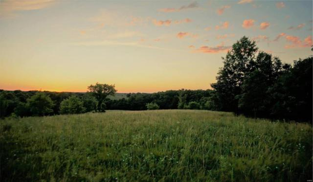0 Hwy J And Dairy Ave - 156 Acre, Unknown, MO 63538 (#18076342) :: PalmerHouse Properties LLC
