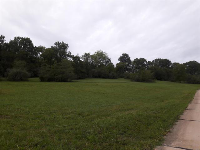 102 Bless Us Drive, Unincorporated, MO 63385 (#18076875) :: Barrett Realty Group