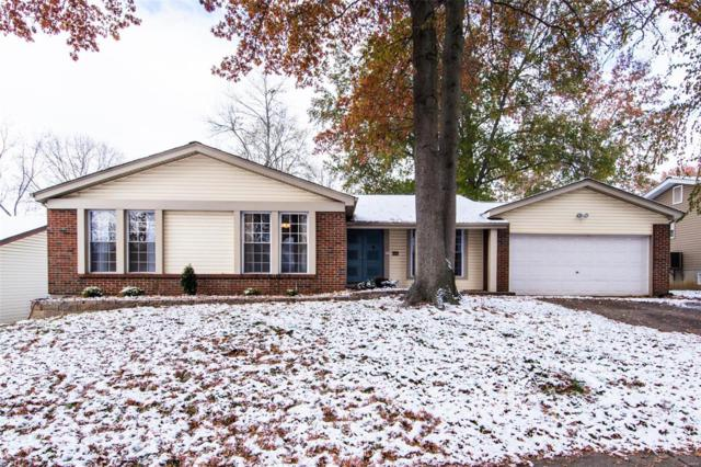1307 Saltbox, Chesterfield, MO 63017 (#18077040) :: RE/MAX Vision