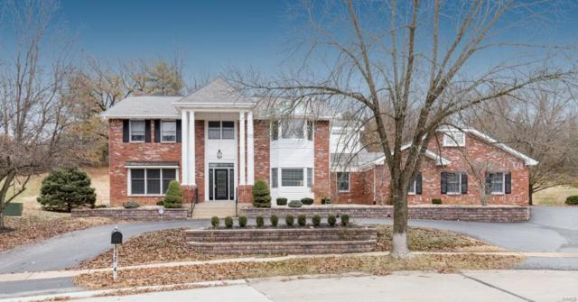 1284 Tammany Lane, Town and Country, MO 63131 (#18077171) :: HergGroup St. Louis