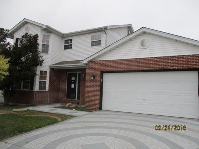 528 Jeffrey Pine Court, O'Fallon, IL 62269 (#18077493) :: Fusion Realty, LLC
