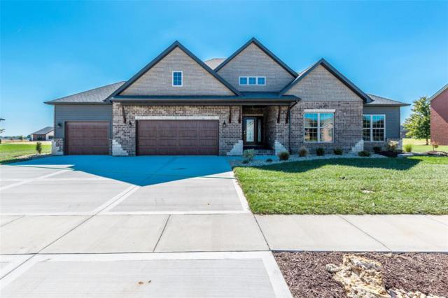 505 Torchlight Lane, Lebanon, IL 62254 (#18079429) :: St. Louis Finest Homes Realty Group
