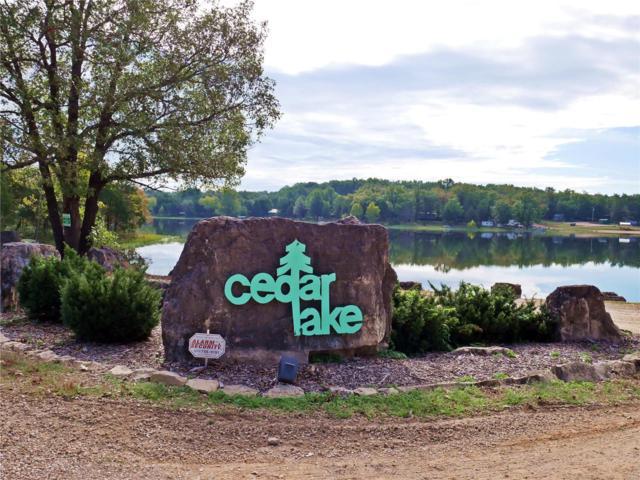 6443 Cedar Lake Drive, Bonne Terre, MO 63628 (#18079568) :: Peter Lu Team