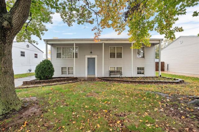 8 Preakness Drive, Saint Peters, MO 63376 (#18081186) :: Walker Real Estate Team