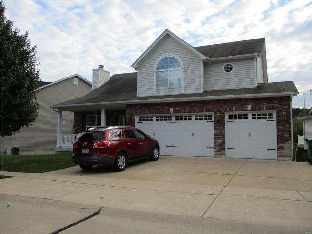 30 Winter Pond, Fenton, MO 63026 (#18081883) :: RE/MAX Professional Realty