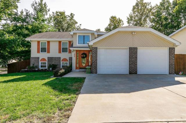 12022 Cedar Lake Court, Maryland Heights, MO 63043 (#18082367) :: St. Louis Finest Homes Realty Group
