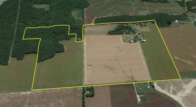 6700 Cecil Road, PATOKA, IL 62875 (#18083149) :: St. Louis Finest Homes Realty Group