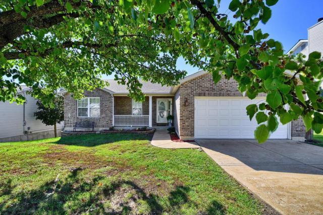 560 Great Plains Drive, House Springs, MO 63051 (#18083219) :: PalmerHouse Properties LLC