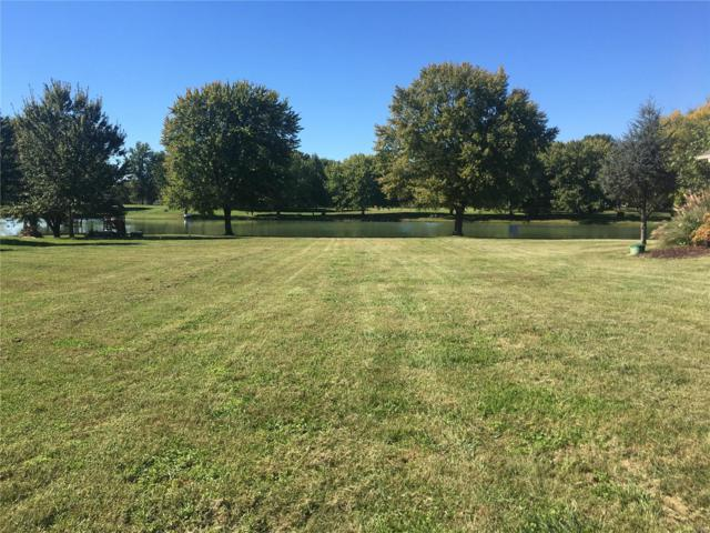 2217 Lake Dr, New Athens, IL 62264 (#18083506) :: Holden Realty Group - RE/MAX Preferred