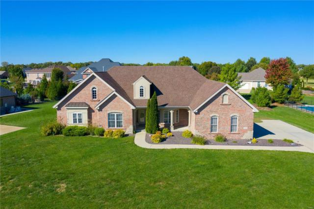 521 Niblick Drive, Caseyville, IL 62232 (#18084792) :: Fusion Realty, LLC