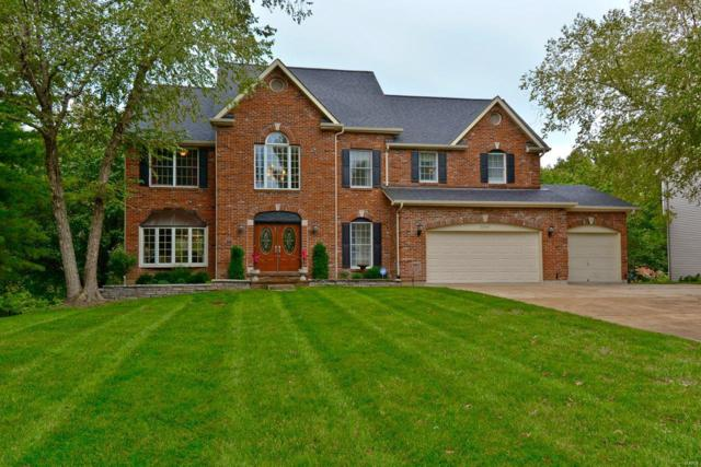 16046 Pierside Lane, Ellisville, MO 63021 (#18086023) :: Kelly Hager Group | TdD Premier Real Estate