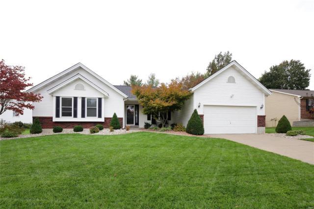 907 Carolyn Jean Drive, O'Fallon, MO 63366 (#18086170) :: Kelly Hager Group   TdD Premier Real Estate