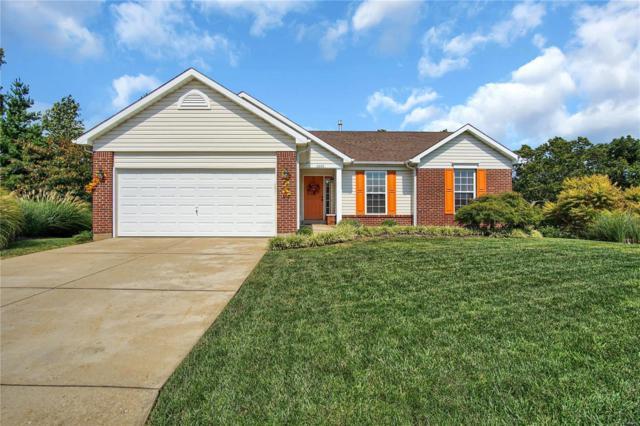 2600 Ruddy Ridge Drive, High Ridge, MO 63049 (#18086590) :: The Becky O'Neill Power Home Selling Team