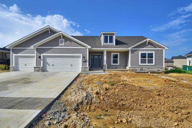 1212 Abington Station Drive, O'Fallon, IL 62269 (#18087330) :: Kelly Hager Group   TdD Premier Real Estate