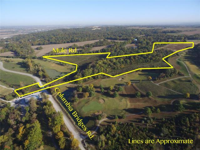 0 00 Mule Road, Columbia, IL 62236 (#18087426) :: Fusion Realty, LLC