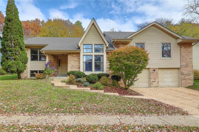 14361 White Birch Valley Lane, Chesterfield, MO 63017 (#18087488) :: PalmerHouse Properties LLC