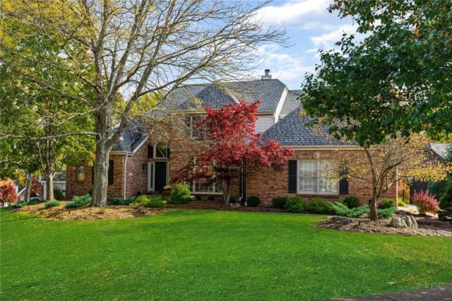 16002 Lugger Wood Court, Ellisville, MO 63021 (#18087663) :: The Kathy Helbig Group