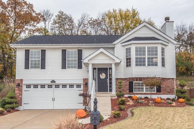 1111 Big Sky Drive, Fenton, MO 63026 (#18088278) :: PalmerHouse Properties LLC