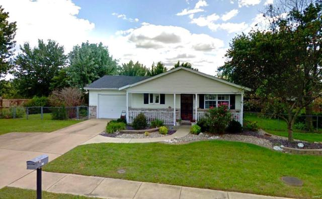 424 Orchard Court, Troy, IL 62294 (#18088769) :: Fusion Realty, LLC