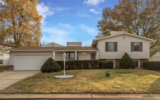 43 Oak Hill Lane, Saint Peters, MO 63376 (#18089260) :: Kelly Hager Group | TdD Premier Real Estate