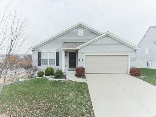 6596 Buckingham Palace Drive, Imperial, MO 63052 (#18089376) :: Clarity Street Realty