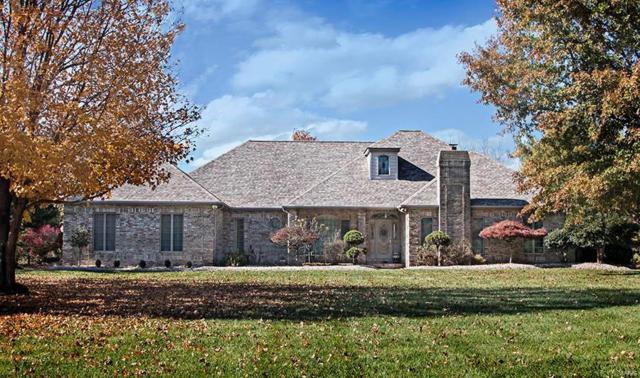 529 E Waters Edge Drive, Shiloh, IL 62221 (#18089396) :: Fusion Realty, LLC
