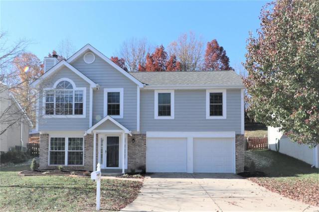 4617 Hickory Ridge View Court, Eureka, MO 63025 (#18089560) :: RE/MAX Vision