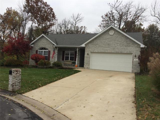 981 Holyoke Drive, Shiloh, IL 62269 (#18090111) :: Fusion Realty, LLC