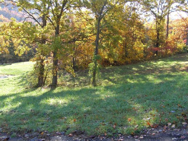 116 Sycamore Lane, Hermann, MO 65041 (#18091301) :: Walker Real Estate Team