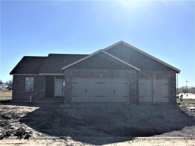 3522 Chippewa Drive, Shiloh, IL 62221 (#18091616) :: Fusion Realty, LLC
