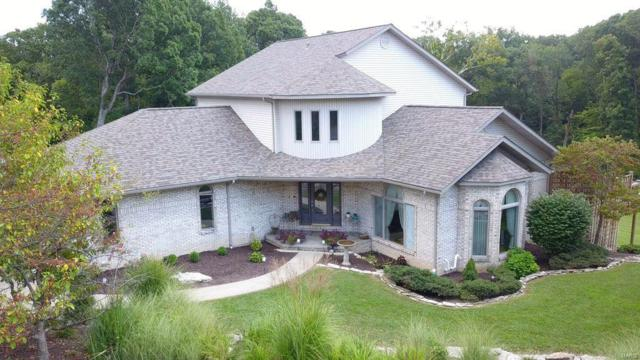 2 Berry Patch, Columbia, IL 62236 (#18091779) :: Holden Realty Group - RE/MAX Preferred