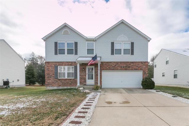 20 Westhaven Meadows Drive, Belleville, IL 62220 (#18092757) :: The Kathy Helbig Group