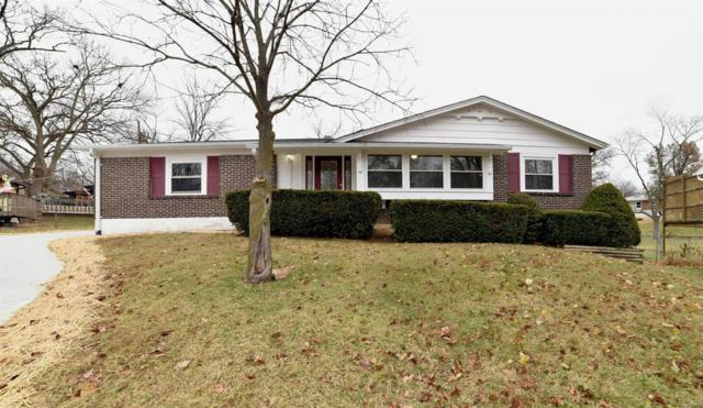 323 Wembley Lane, Manchester, MO 63021 (#18093300) :: The Kathy Helbig Group