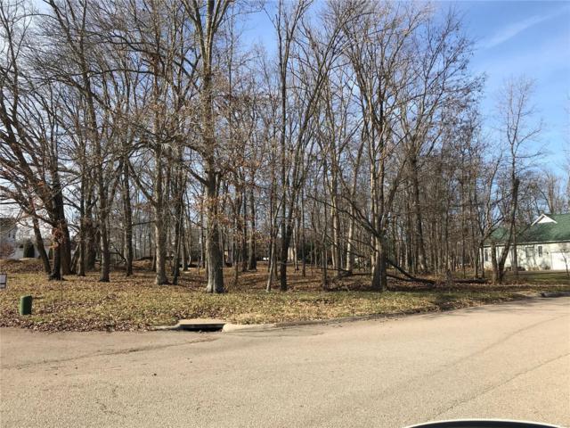 27 Spring Brook Park Drive, Farmington, MO 63640 (#18094079) :: Peter Lu Team