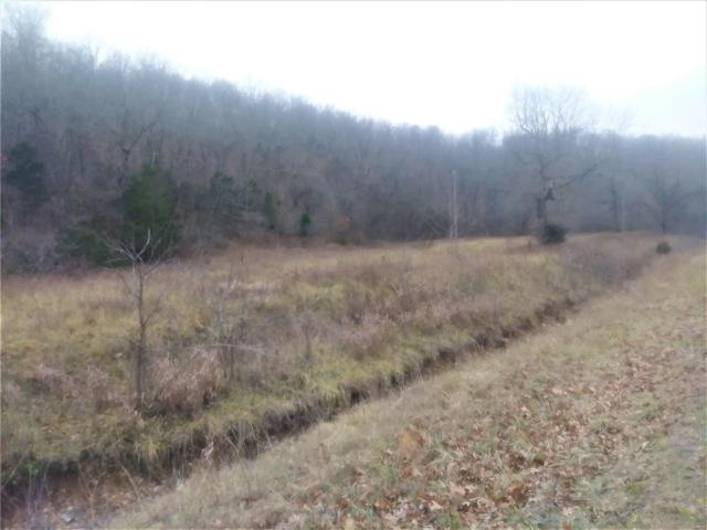 0 State Hwy Nn, Laquey, MO 65534 (#18095649) :: RE/MAX Professional Realty