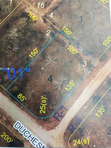 0 Duchesne, Bonne Terre, MO 63628 (#18096262) :: Kelly Hager Group | TdD Premier Real Estate