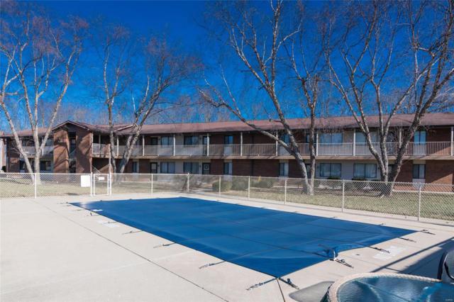220 Suppiger Lane #213, Highland, IL 62249 (#19000261) :: Fusion Realty, LLC