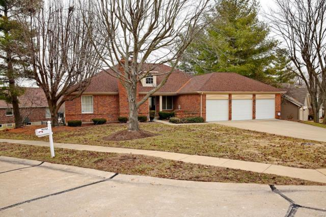 16767 Stanford Place, Florissant, MO 63034 (#19000799) :: Clarity Street Realty