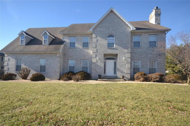 109 Hickory Lake Lane, Belleville, IL 62223 (#19001179) :: Fusion Realty, LLC