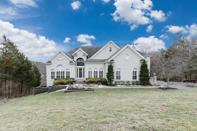 4016 Princeton Ridge Drive, Wildwood, MO 63025 (#19001301) :: St. Louis Finest Homes Realty Group