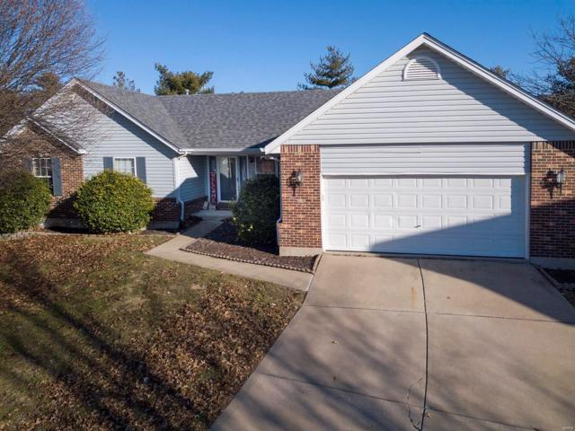 8200 Bristol Valley Drive, Saint Peters, MO 63376 (#19001486) :: The Kathy Helbig Group