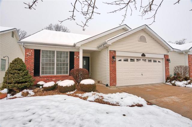 22 Soenker Circle, Saint Peters, MO 63376 (#19002122) :: Kelly Hager Group | TdD Premier Real Estate