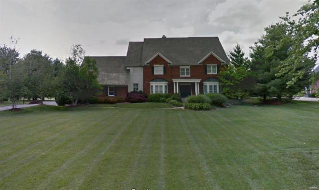 509 E Waters Edge Drive, Shiloh, IL 62221 (#19002164) :: Fusion Realty, LLC