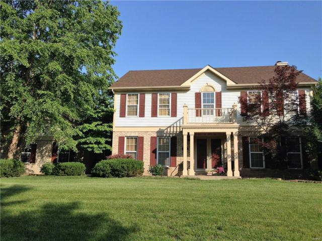 4225 Woodfield Place, Belleville, IL 62226 (#19002180) :: Fusion Realty, LLC